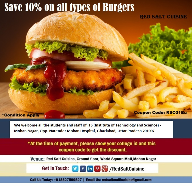 10-off-on-burgers-for-ITS-(Institute of Technology and Science) - Mohan Nagar-ghaziabad-read-salt-cuisine