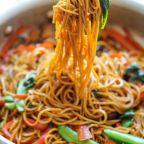 Classic Chinese Chow Mein Loaded With Veggies..!!