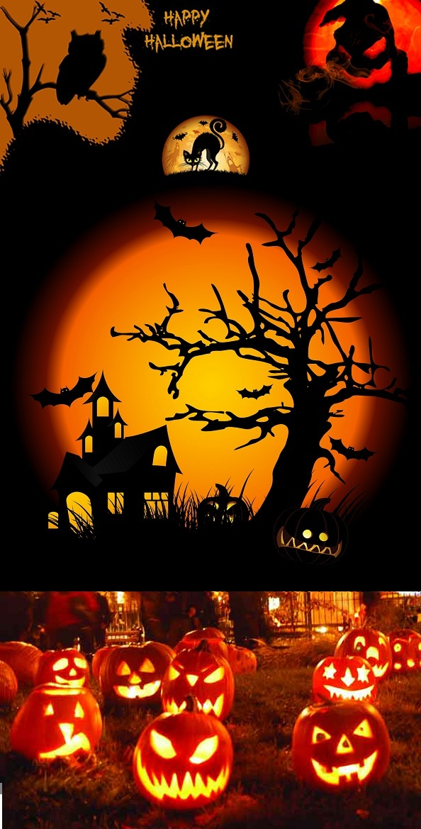 halloween night with pumpkin in grass tree bat and hunting house in background
