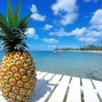 Refreshing Pineapple Shake To Enjoy the Bright Morning..!!