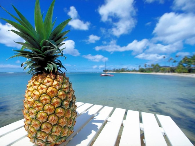 Pineapple Shake 2