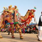 Vibrant Bikaner Culture Famous All around the World