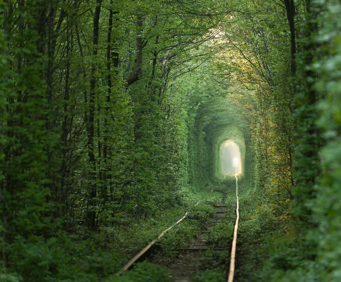 The Tunnel of Love.jpg
